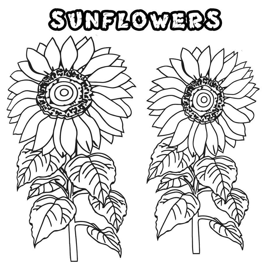 Sunflower Coloring Pages For Adults  Flower Coloring Pages For Adults