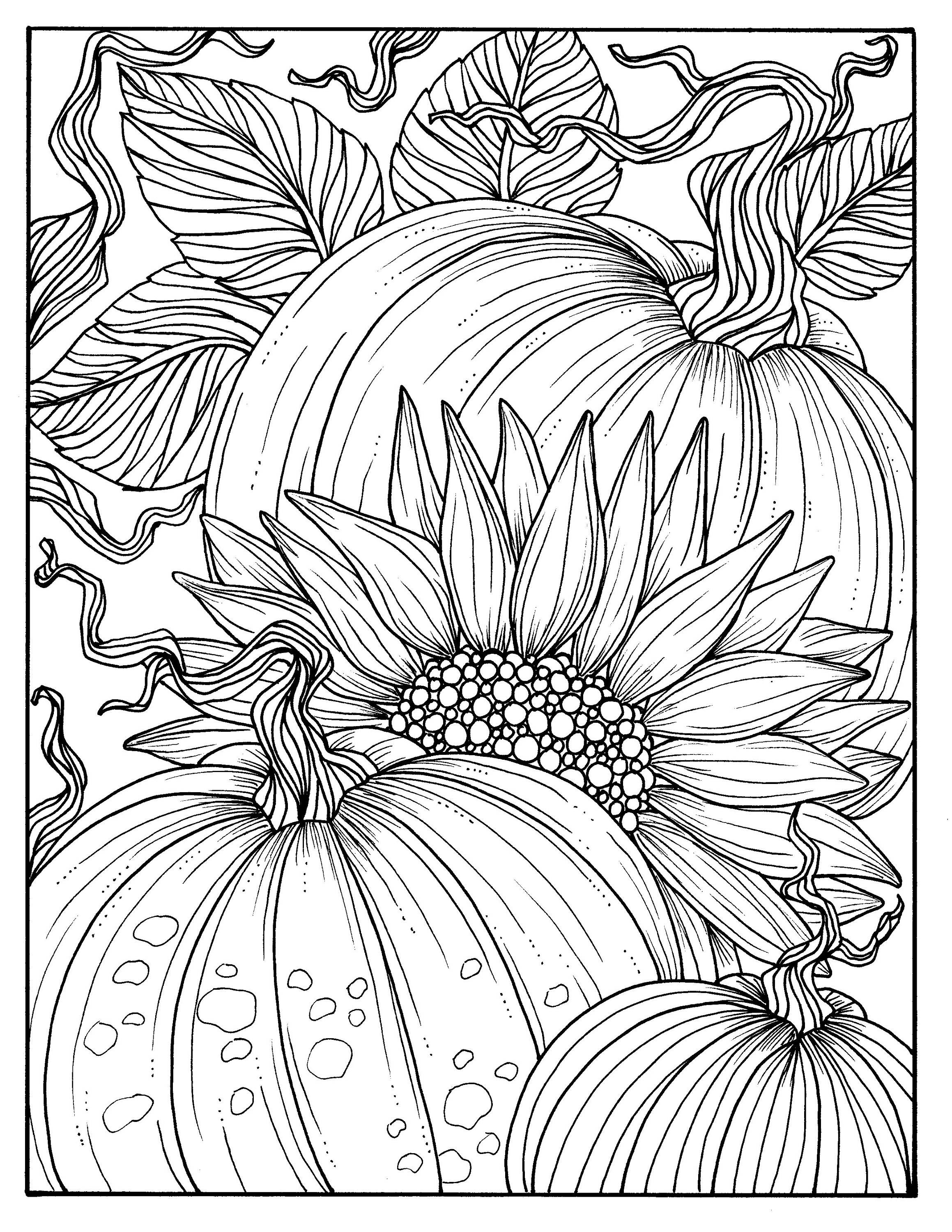 Sunflower Coloring Pages For Adults  5 Pages Fabulous Fall Digital Downloads to Color Punpkins