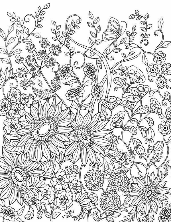 Sunflower Coloring Pages For Adults  Sunflowers Adult Coloring Page …
