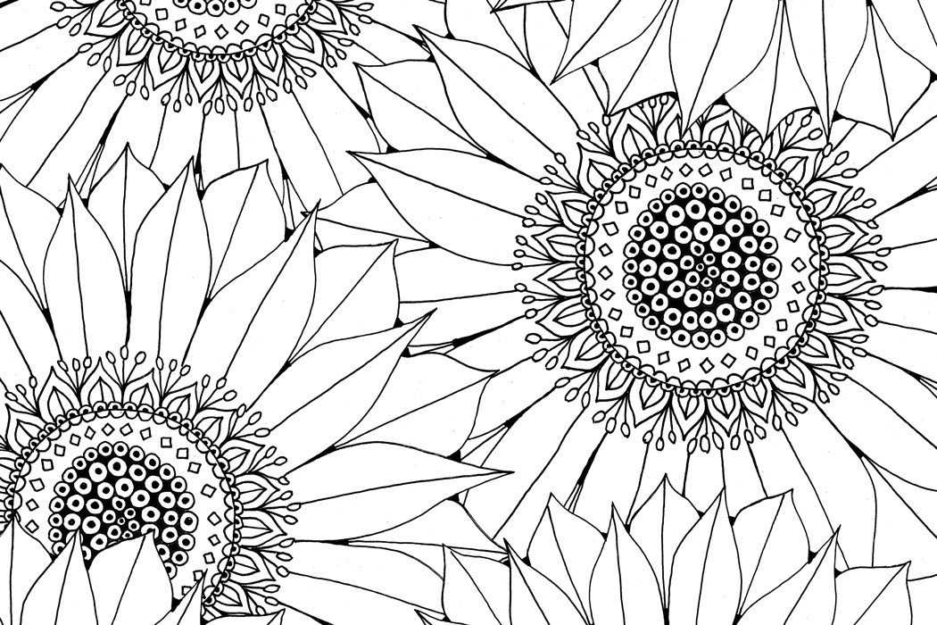 Sunflower Coloring Pages For Adults  Sunflower Free Pattern Download Hobbycraft Blog