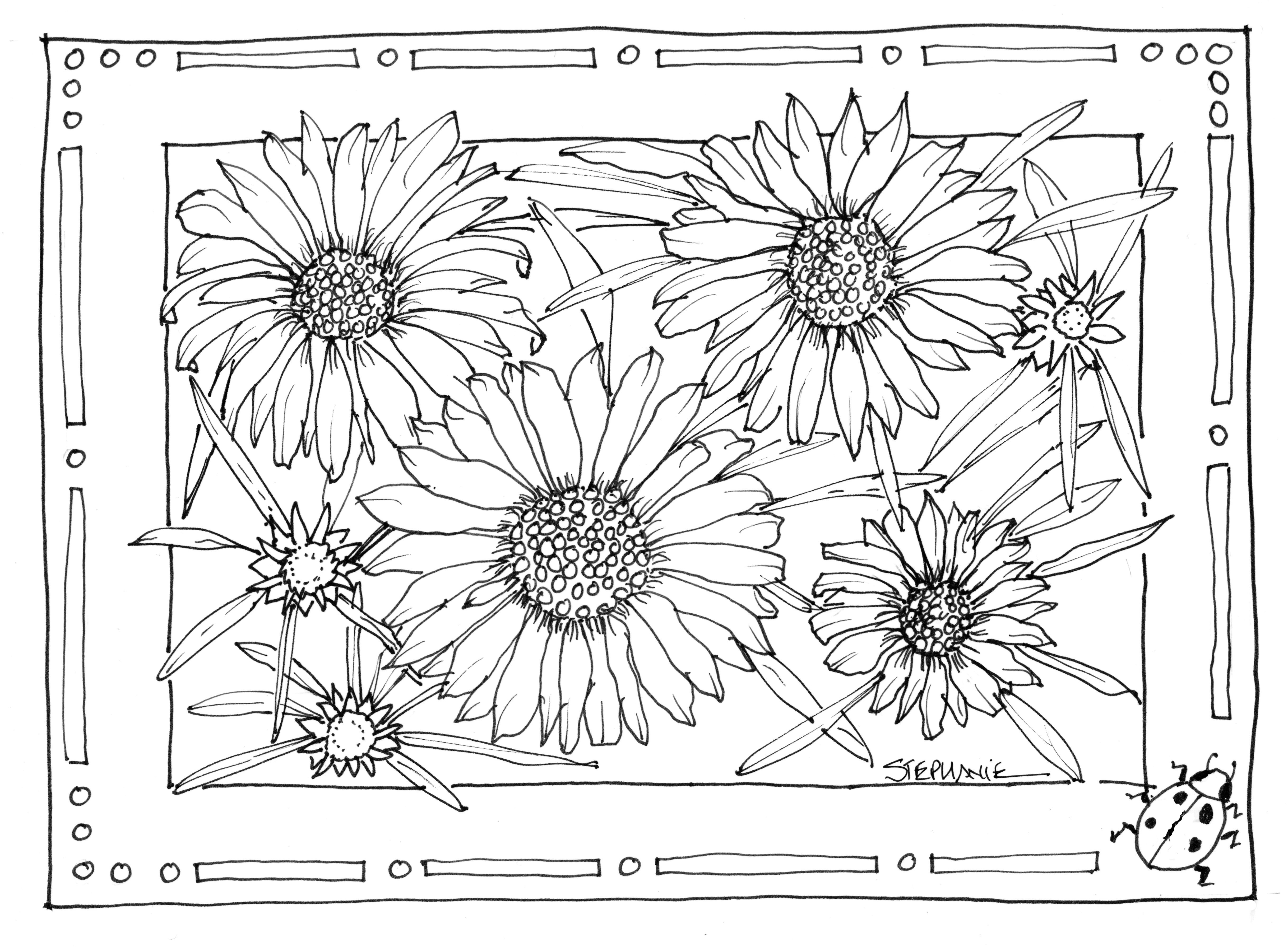 Sunflower Coloring Pages For Adults  Sunflower Coloring Pages Bestofcoloring