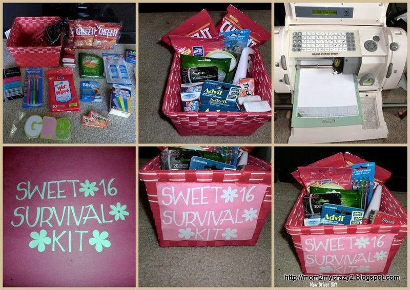 Sweet Sixteen Gift Ideas For Girls  Running away I ll help you pack Birthday Gift Ideas