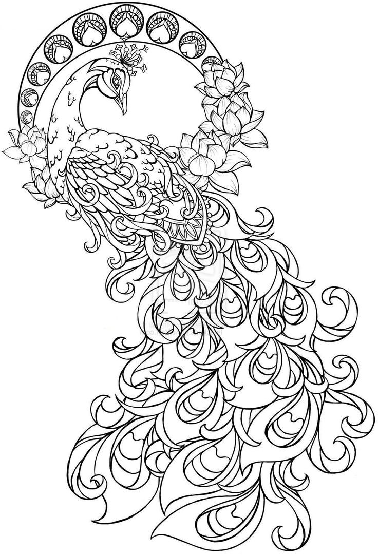 Tattoo Coloring Pages For Adults  Paisley Pattern Tattoo Design To Coloring Page