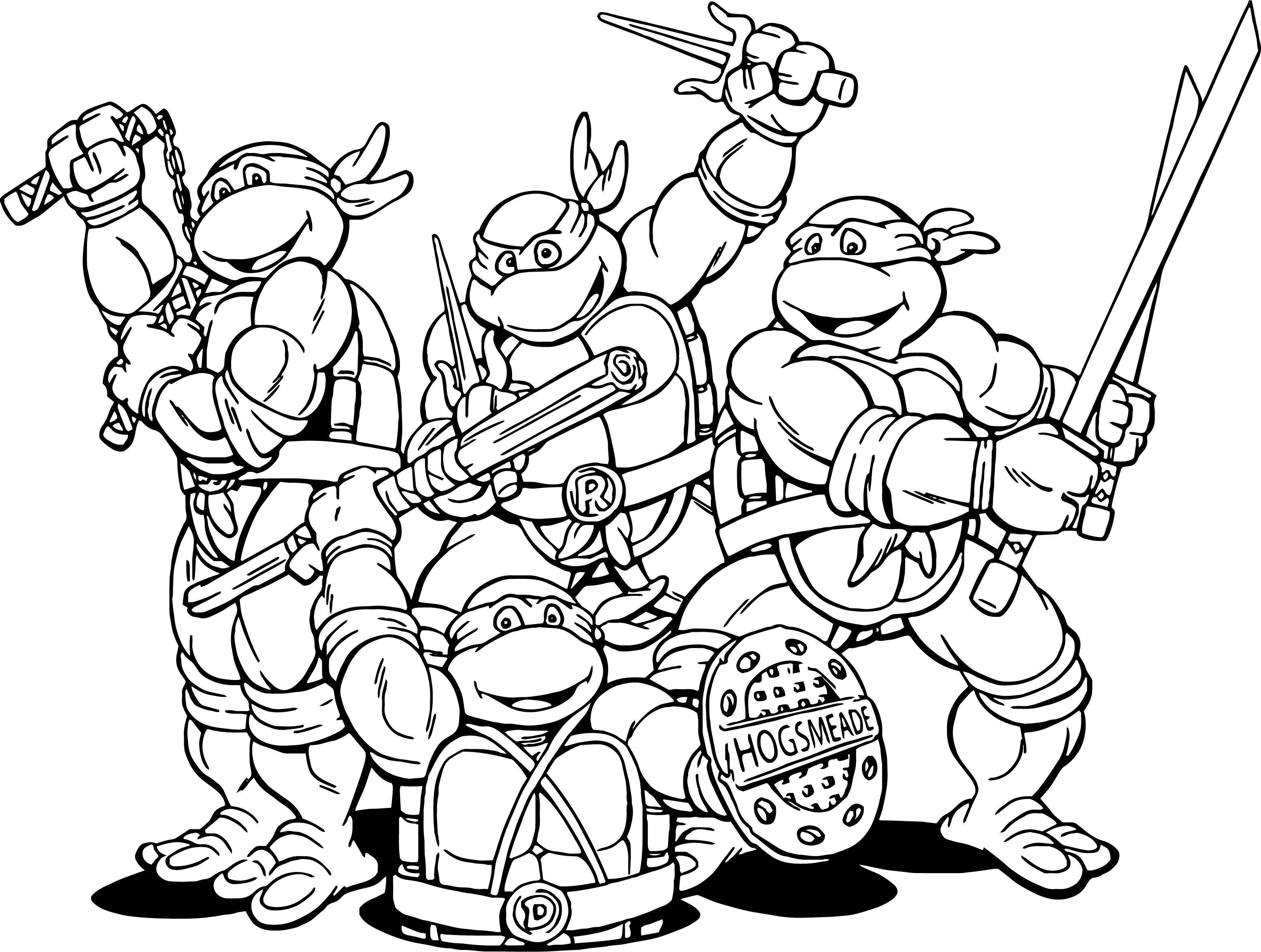 Teenage Mutant Ninja Turtles Coloring Book  Teenage Mutant Ninja Turtles Cartoon Coloring Page