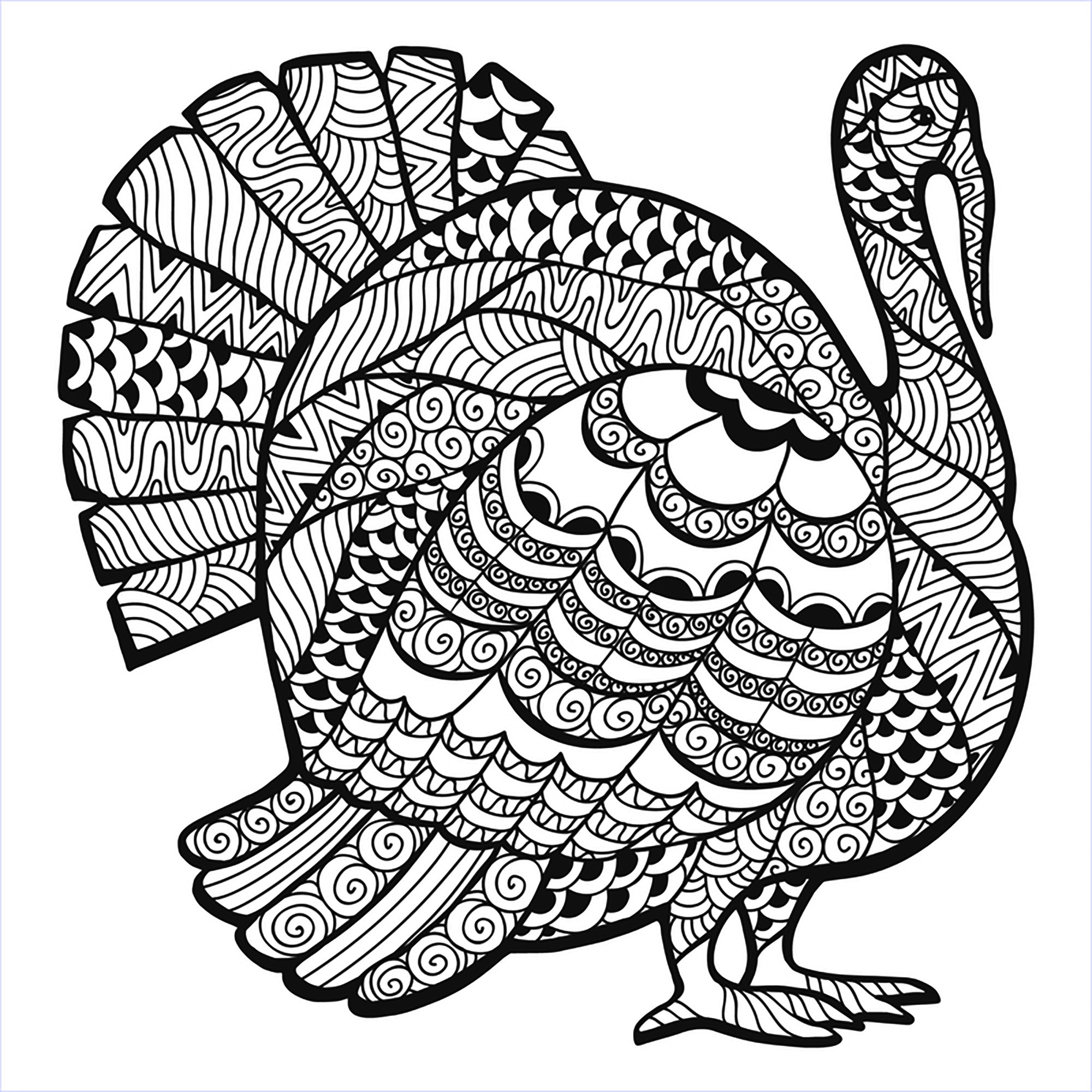 Thanksgiving Coloring Pages For Adults Free  Thanksgiving Coloring Pages For Adults to and