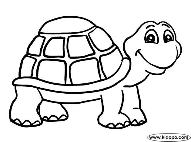 Turtle Coloring Book  เรียนภาษาอังกฤษ ความรู้ภาษาอังกฤษ ทำอย่างไรให้เก่งอังกฤษ