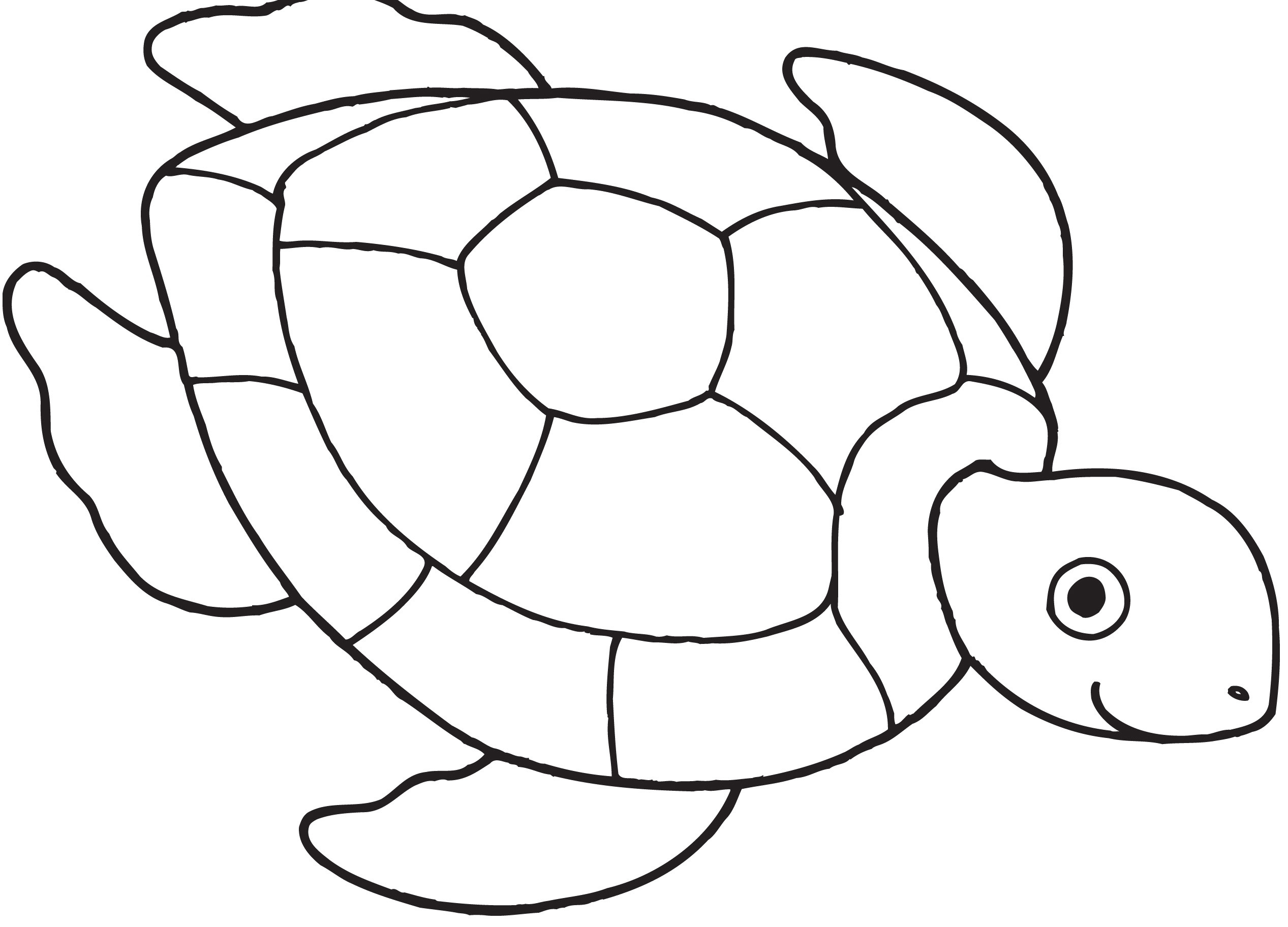 Turtle Coloring Book  Turtle Coloring Page Coloring Book Coloring Pages