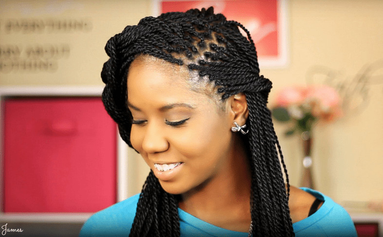 Twist Braid Hairstyles Pictures  Senegalese Twist Hairstyles How To Do Hair Type