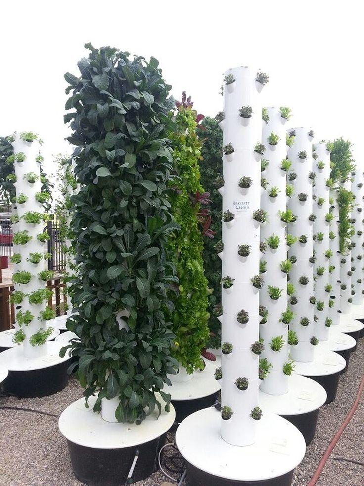 Best ideas about Vertical Hydroponic Garden . Save or Pin 25 beautiful Vertical hydroponics ideas on Pinterest Now.