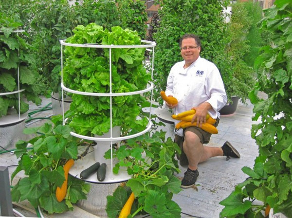 Best ideas about Vertical Hydroponic Garden . Save or Pin Independent at Home Six Systems for Self Sufficient Living Now.