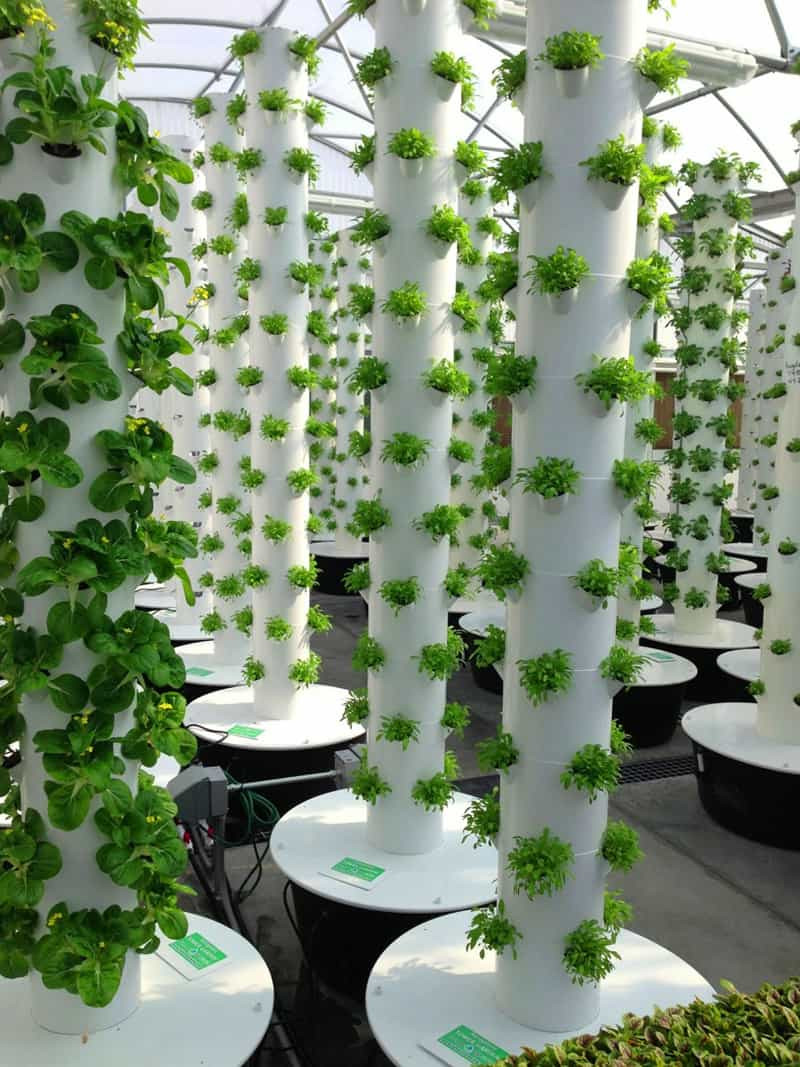 Best ideas about Vertical Hydroponic Garden . Save or Pin Vertical Aeroponic Tower Garden Now.
