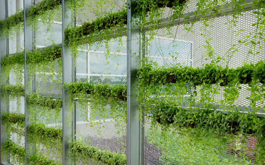 Best ideas about Vertical Hydroponic Garden . Save or Pin Vertical Hydroponic Garden Hydroponic DIY Projects Now.