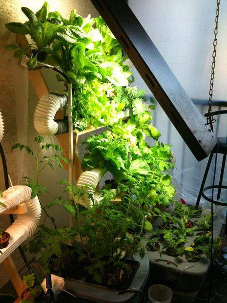 Best ideas about Vertical Hydroponic Garden . Save or Pin 12 Innovative Homemade Hydroponics Systems Now.