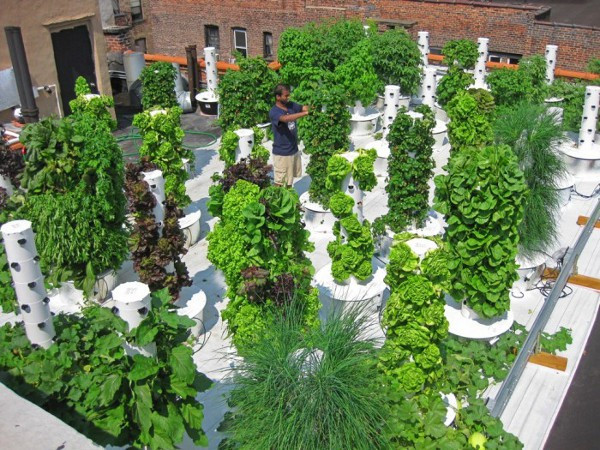 Best ideas about Vertical Hydroponic Garden . Save or Pin Vertical Hydroponic Gardening 1 • TheCoolist The Modern Now.