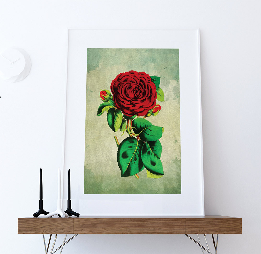 Best ideas about Wall Art Prints . Save or Pin Rose decor Red Rose art Rose t botanical print flower Now.