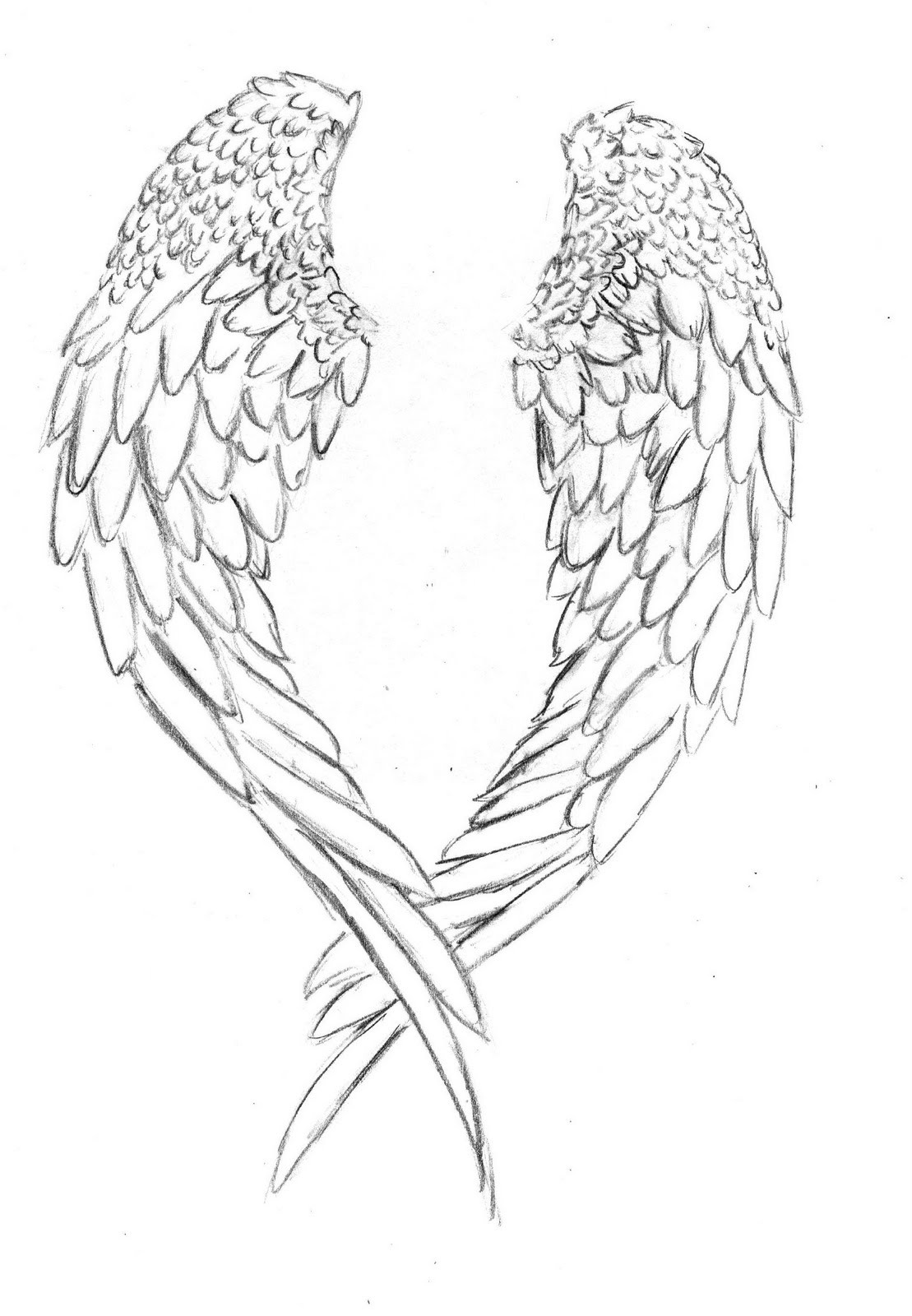 Wings Coloring Pages  Wings