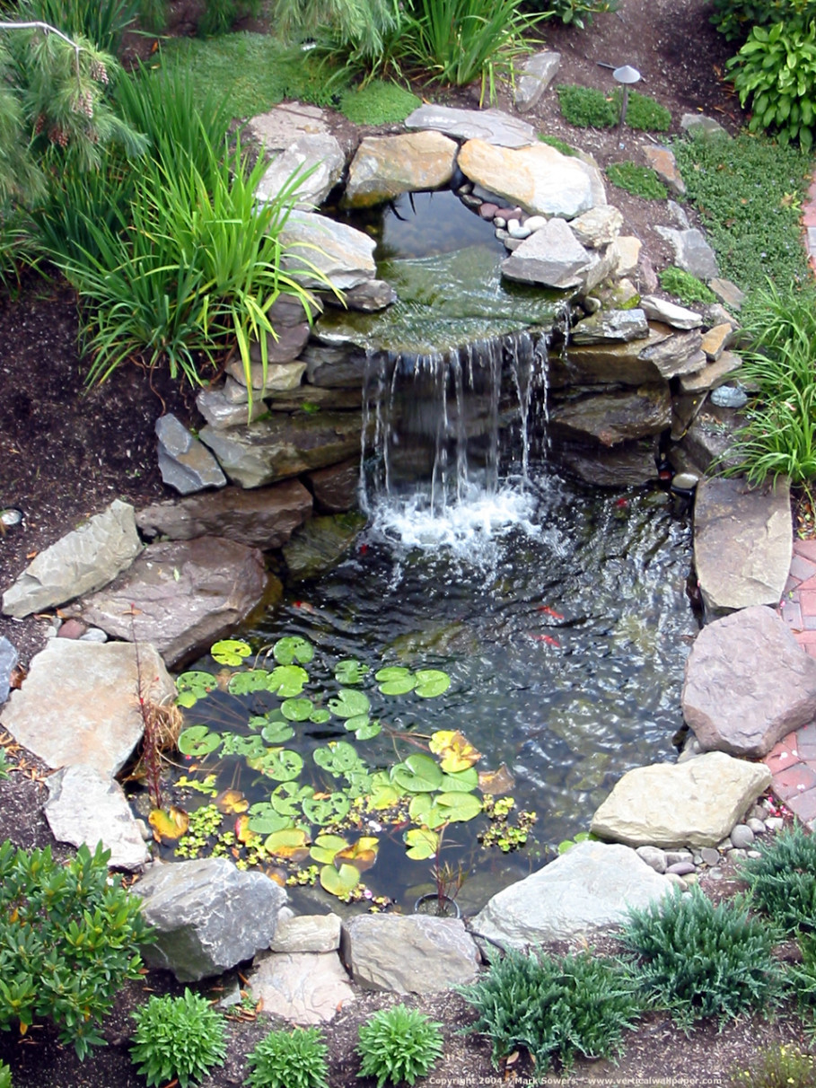 Best ideas about Backyard Ponds With Waterfalls . Save or Pin garden landscaping Charming Backyard Pond which Now.