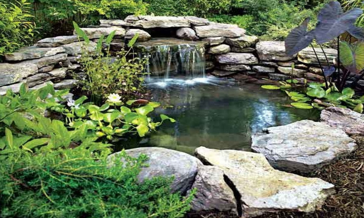 Best ideas about Backyard Ponds With Waterfalls . Save or Pin Waterfall ideas for ponds large backyard ponds back yard Now.