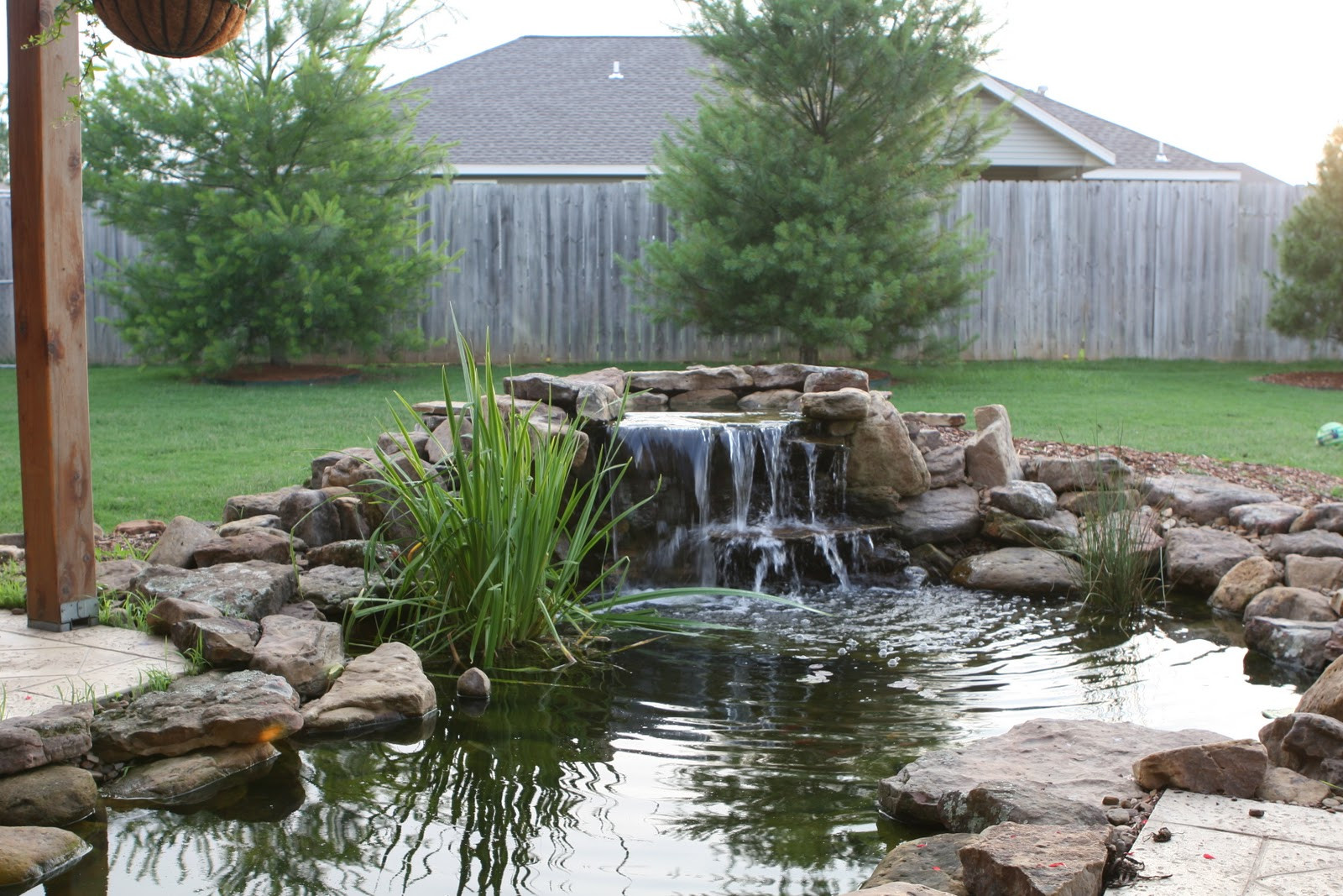 Best ideas about Backyard Ponds With Waterfalls . Save or Pin Tips Creating And Maintaining A Backyard Fish Pond Now.