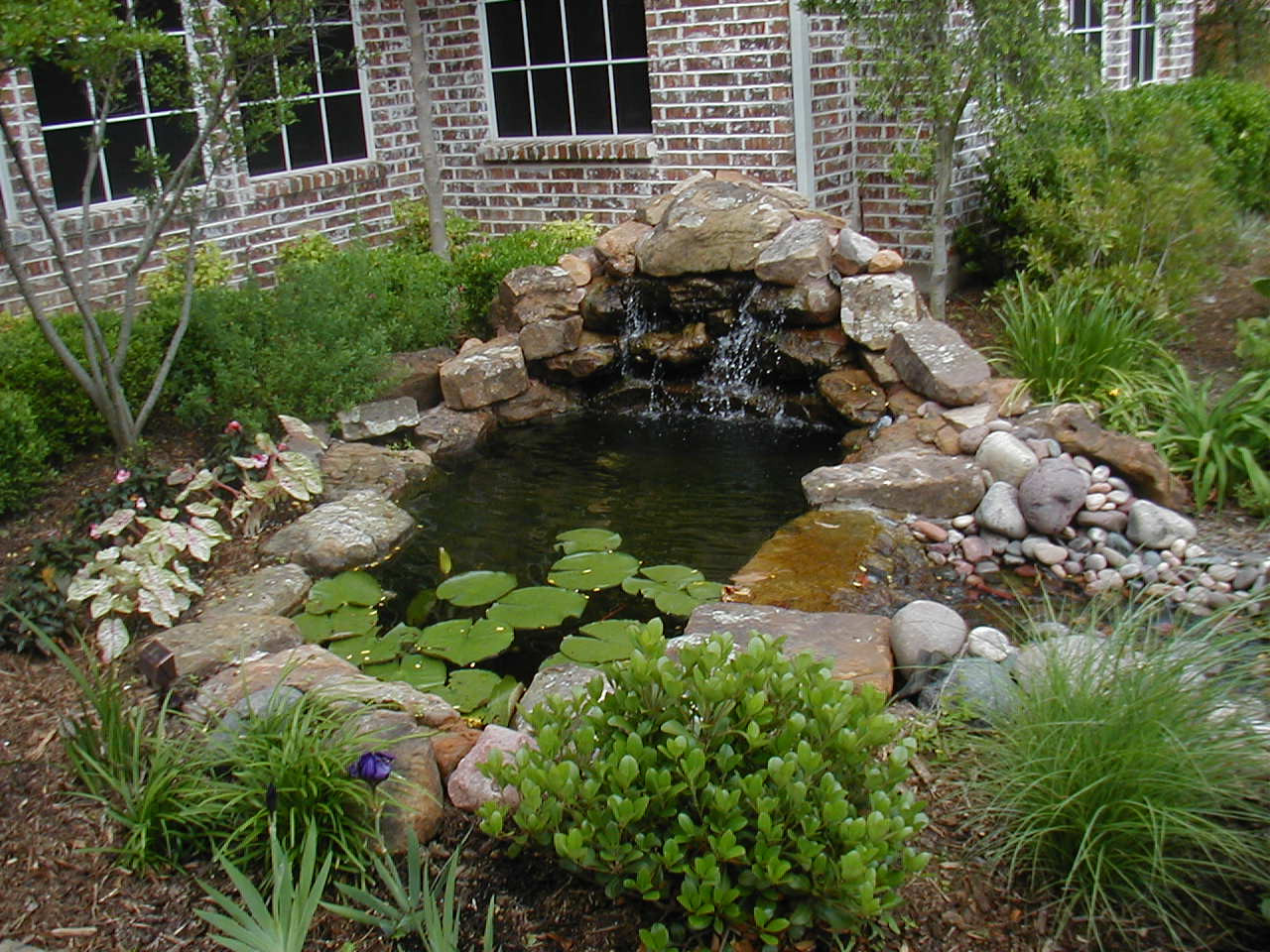 Best ideas about Backyard Ponds With Waterfalls . Save or Pin Wonderful Garden Pond Ideas with Koi Fish Amaza Design Now.