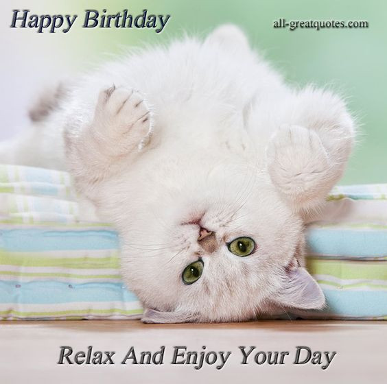 Best ideas about Cat Birthday Wishes . Save or Pin Happy Birthday Relax And Enjoy Your Day Happy Birthday Now.