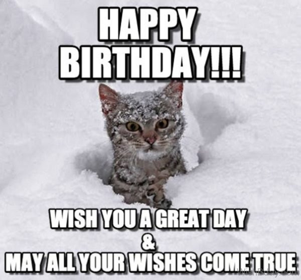 Best ideas about Cat Birthday Wishes . Save or Pin 86 Cat Birthday Wishes Now.