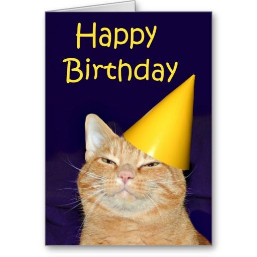 Best ideas about Cat Birthday Wishes . Save or Pin 17 best images about Cat Birthday Cards on Pinterest Now.