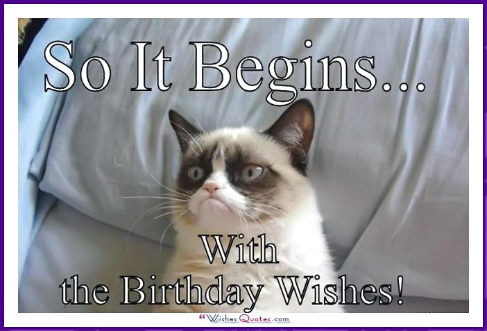 Best ideas about Cat Birthday Wishes . Save or Pin Happy Birthday Memes with Funny Cats Dogs and Cute Animals Now.