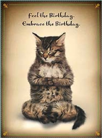 Best ideas about Cat Birthday Wishes . Save or Pin Cat Memes Happy Birthday Cat Memes Funny Cat Memes Now.