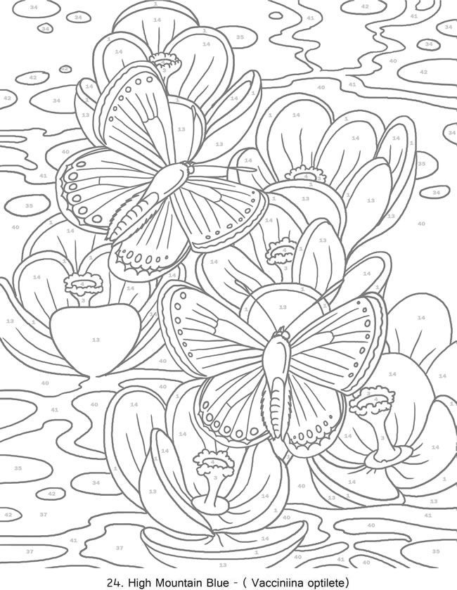 Best ideas about Color By Number Adult Coloring Books . Save or Pin Best 25 Adult color by number ideas on Pinterest Now.