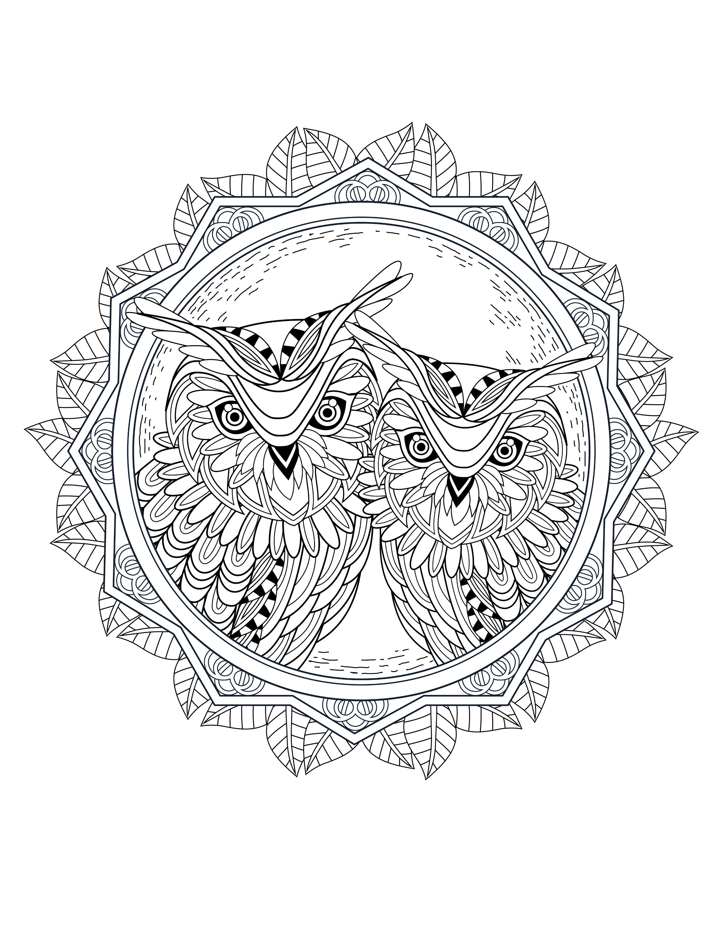 Best ideas about Coloring Books Adult . Save or Pin OWL Coloring Pages for Adults Free Detailed Owl Coloring Now.