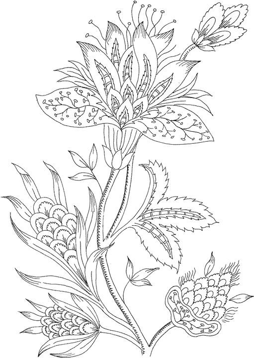 Best ideas about Coloring Pages For Adults Only . Save or Pin free coloring pages for adults Now.