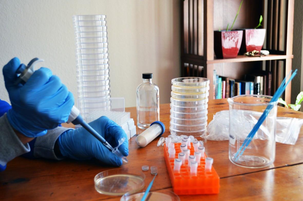 Best ideas about DIY Crispr Kit . Save or Pin Biohackers Disregard FDA Warning on DIY Gene Therapy MIT Now.