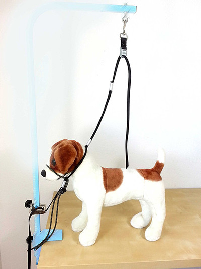 Best ideas about DIY Dog Bathing . Save or Pin Dog Grooming Harness The Best Reviewed Now.