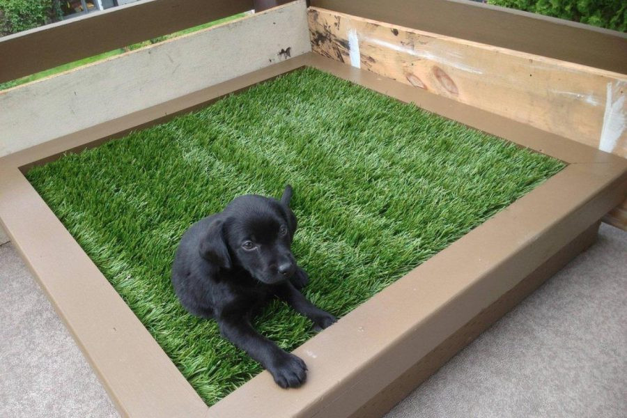 Best ideas about DIY Dog Bed Ideas . Save or Pin 27 DIY Pet Bed Ideas For Your Inspiration InteriorSherpa Now.