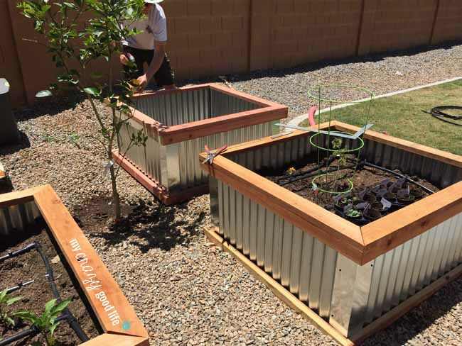Best ideas about DIY Elevated Planter Box . Save or Pin DIY Raised Garden Beds with Corrugated Metal Now.