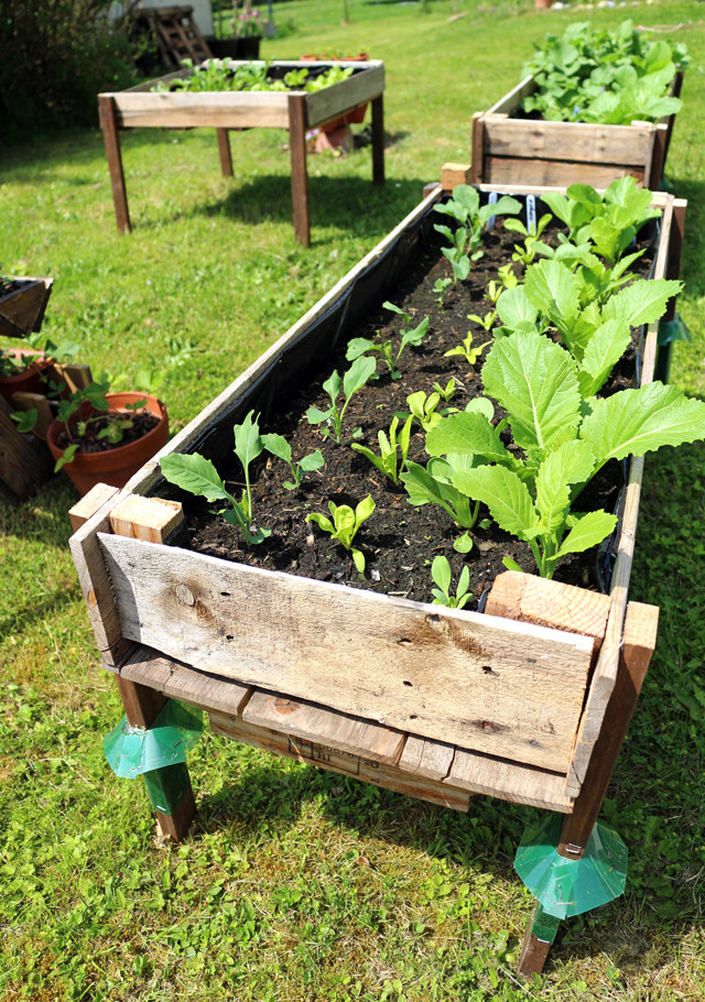 Best ideas about DIY Elevated Planter Box . Save or Pin CONTAINER GARDENING Easy DIY Elevated Planter Box from Pallet Now.