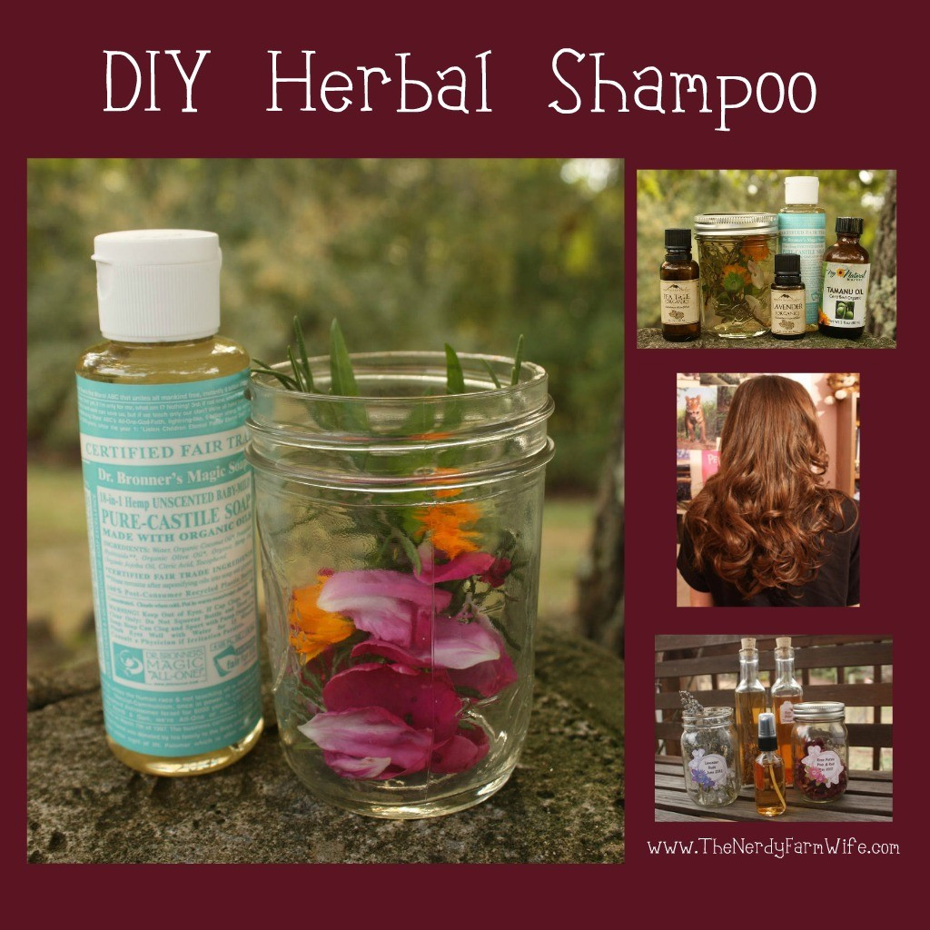Best ideas about DIY Hair Growth Shampoo . Save or Pin Hair Loss Shampoo Hair Loss Shampoo Recipe Now.