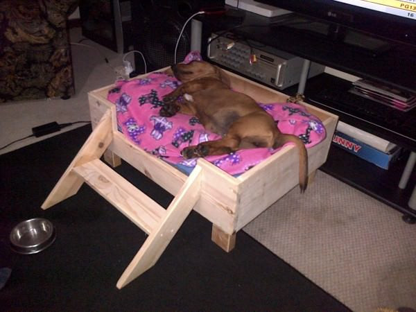 Best ideas about DIY Raised Dog Bed . Save or Pin 26 Best DIY Pet Bed Ideas and Designs for 2017 Now.