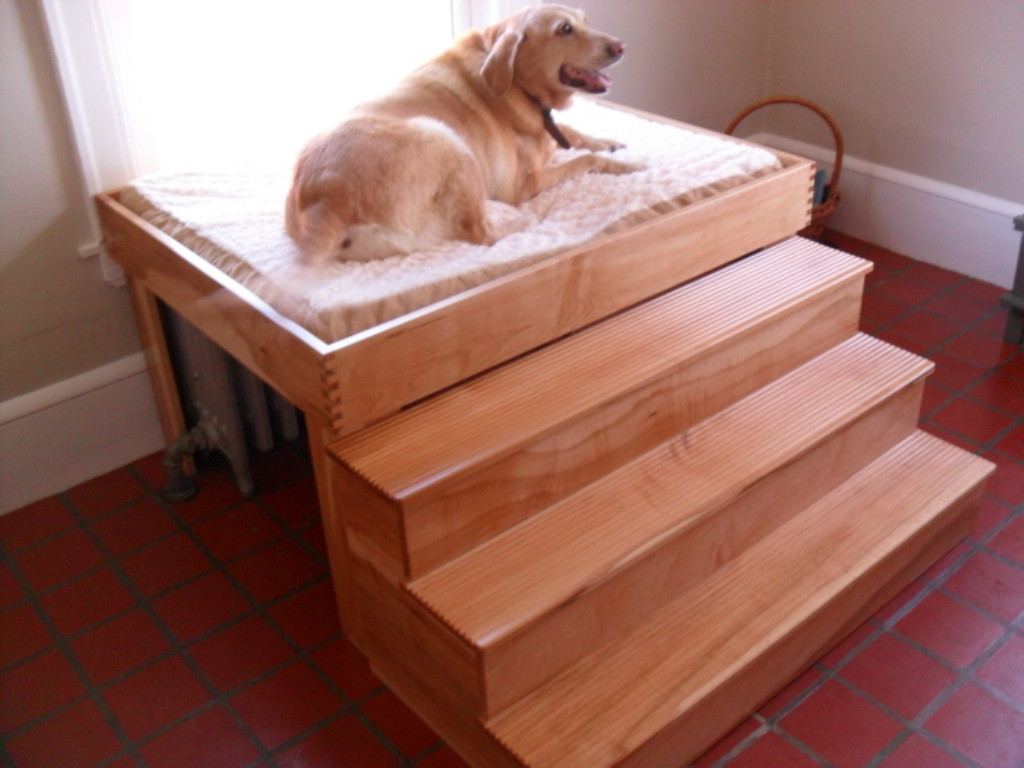 Best ideas about DIY Raised Dog Bed . Save or Pin Considering Valuable Dog Stairs for Bed Idea Now.