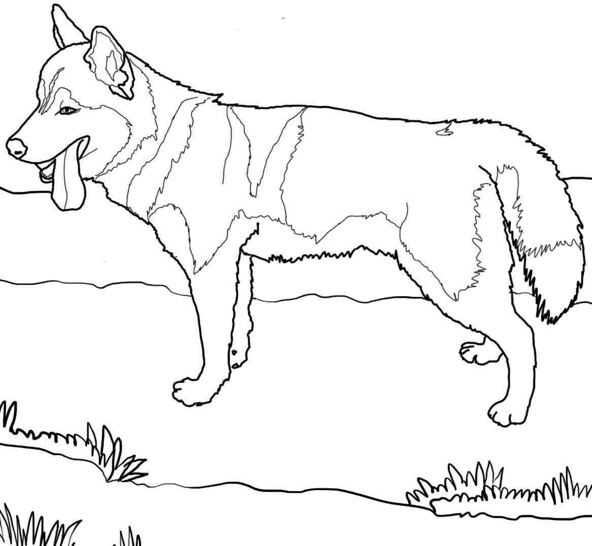 Best ideas about Dog Coloring Pages For Boys . Save or Pin 52 Best Printable Dog Coloring Pages Gianfreda Now.