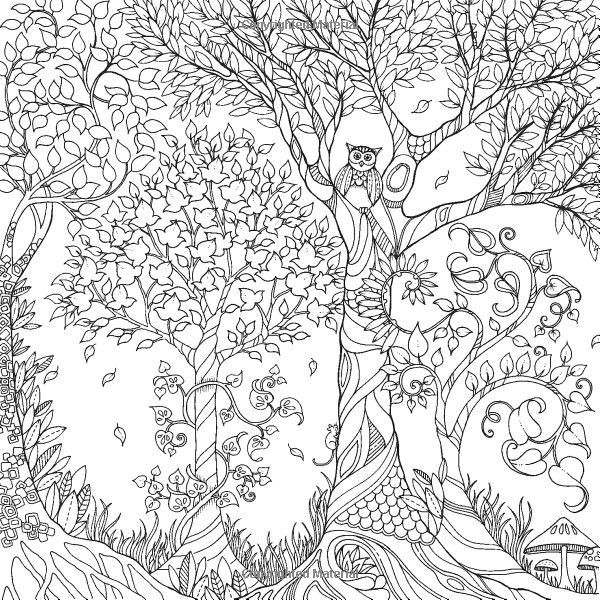 Best ideas about Enchanted Forest Coloring Sheets For Kids . Save or Pin 12 Pics of Enchanted Forest Coloring Book Pages Owl Now.