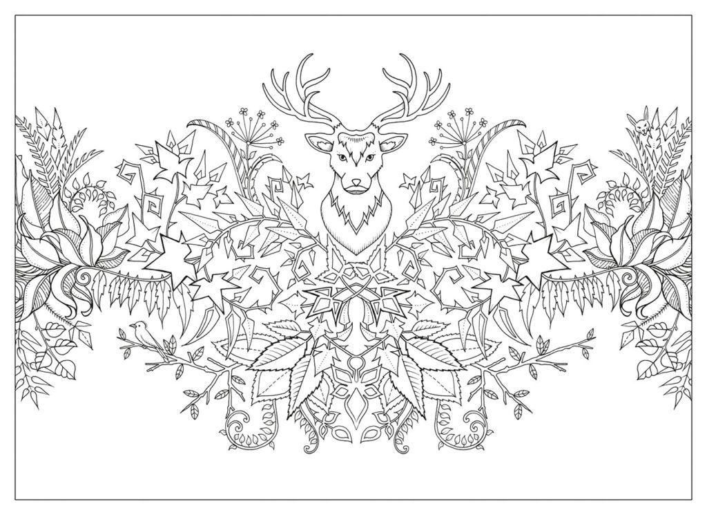Best ideas about Enchanted Forest Coloring Sheets For Kids . Save or Pin Enchanted Forest Postcards 20 Postcards Ohfriday Now.