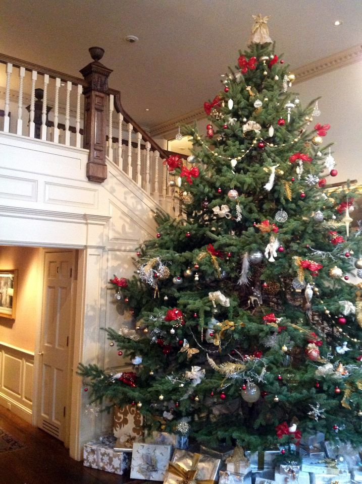 Best ideas about Entryway Christmas Tree . Save or Pin 19 best Christmas tree in foyer images on Pinterest Now.
