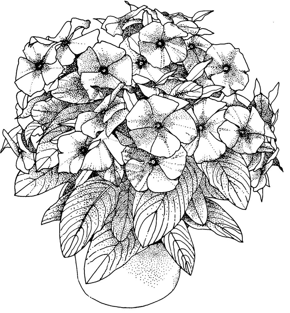 Best ideas about Free Coloring Sheets Flowers . Save or Pin Flower Coloring Pages for Adults Best Coloring Pages For Now.