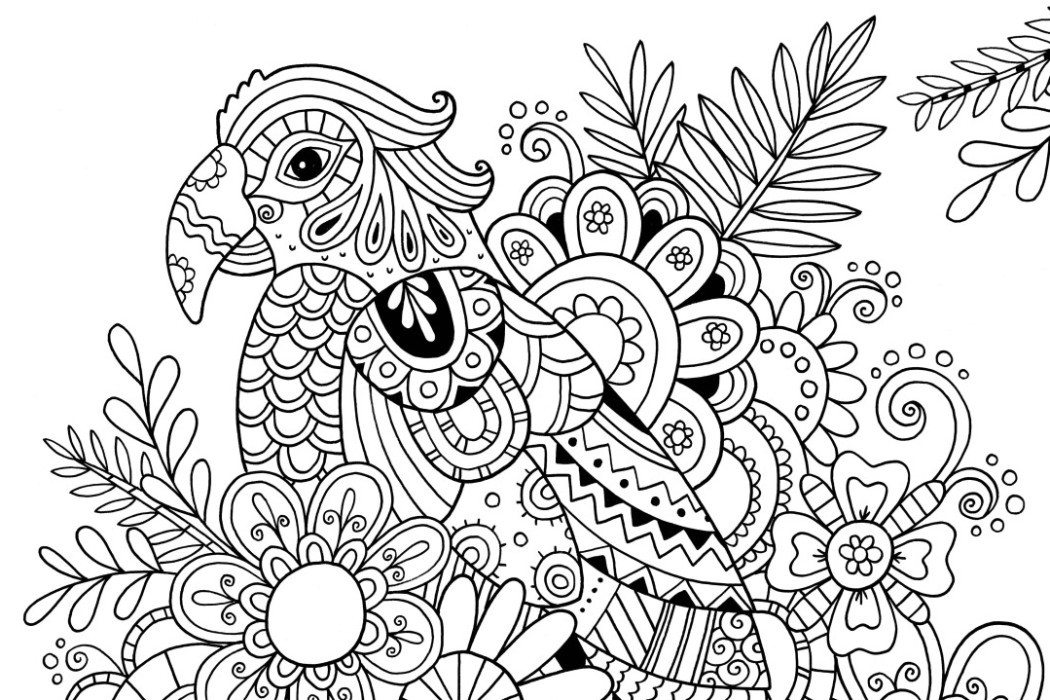 Best ideas about Free Printable Coloring Pages For Adults Hard That Are Zentangles . Save or Pin How to Draw Zentangle Patterns Hobbycraft Blog Now.