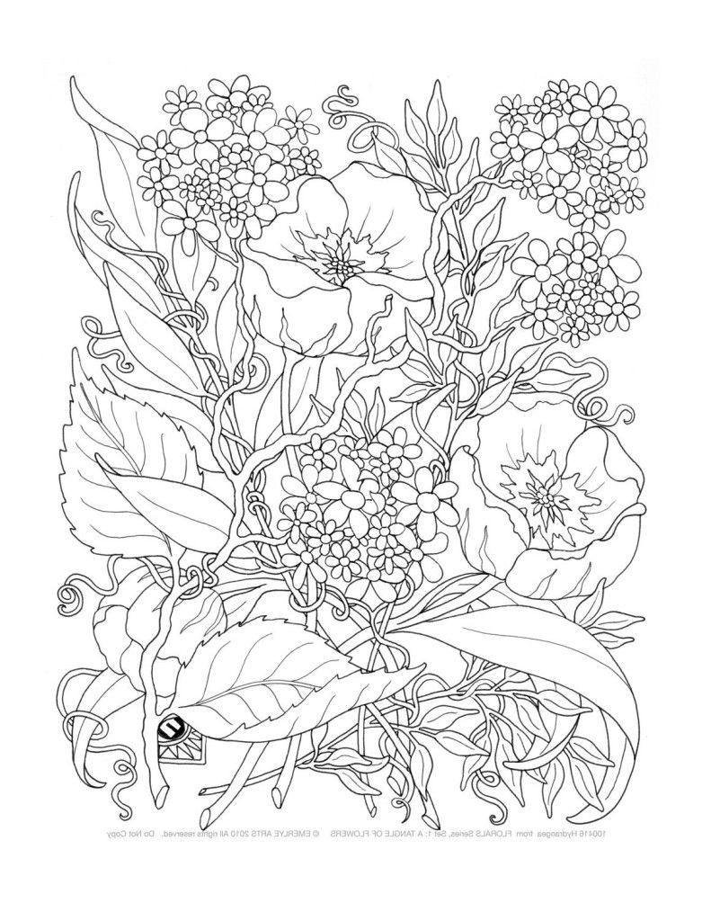 Best ideas about Free Printable Coloring Pages For Adults Only . Save or Pin Free Printable Coloring Pages Adults ly Coloring Home Now.