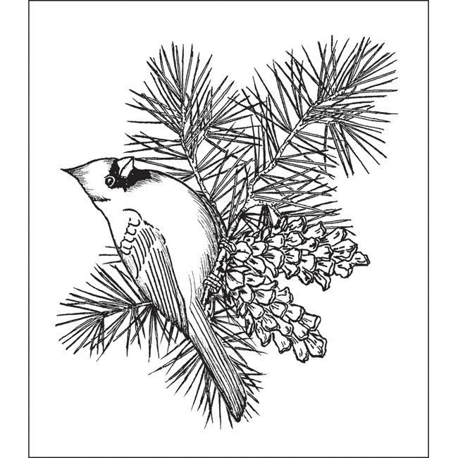 Best ideas about Free Printable Coloring Sheets For Adults Winter Pine Tree . Save or Pin Heartfelt Creations Cardinal Pine Bough Stamps Now.