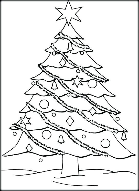 Best ideas about Free Printable Coloring Sheets For Adults Winter Pine Tree . Save or Pin Pine Tree Colouring Pages Coloring Trees Oak Page Free Now.