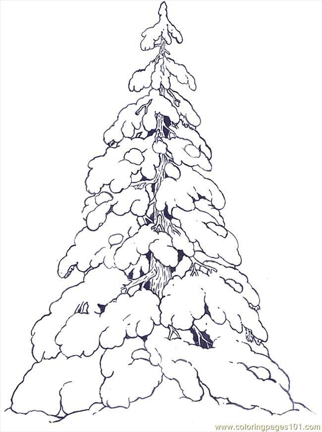 Best ideas about Free Printable Coloring Sheets For Adults Winter Pine Tree . Save or Pin free printable coloring image Snow Covered Evergreens Now.